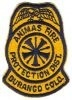 Animas_Fire_Protection_District_Durango_Patch_v1_Colorado_Patches_COFr.jpg